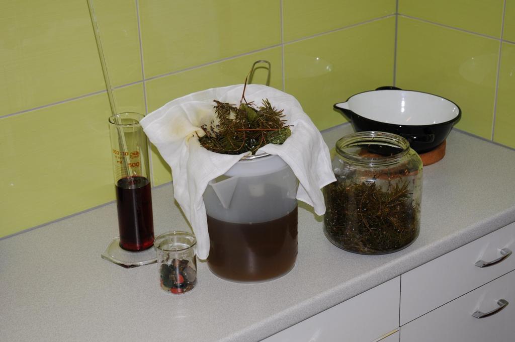 Plantes des forêts récoltées par Florence, pierres semi-précieuses, huiles d'olive et de tournesol Bio extra vierge composent les huiles et Elixirs de pierres de L'Alchimiste.